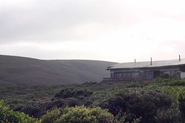 Ekolodge Grootbos fem hotelltips Kaphalvön