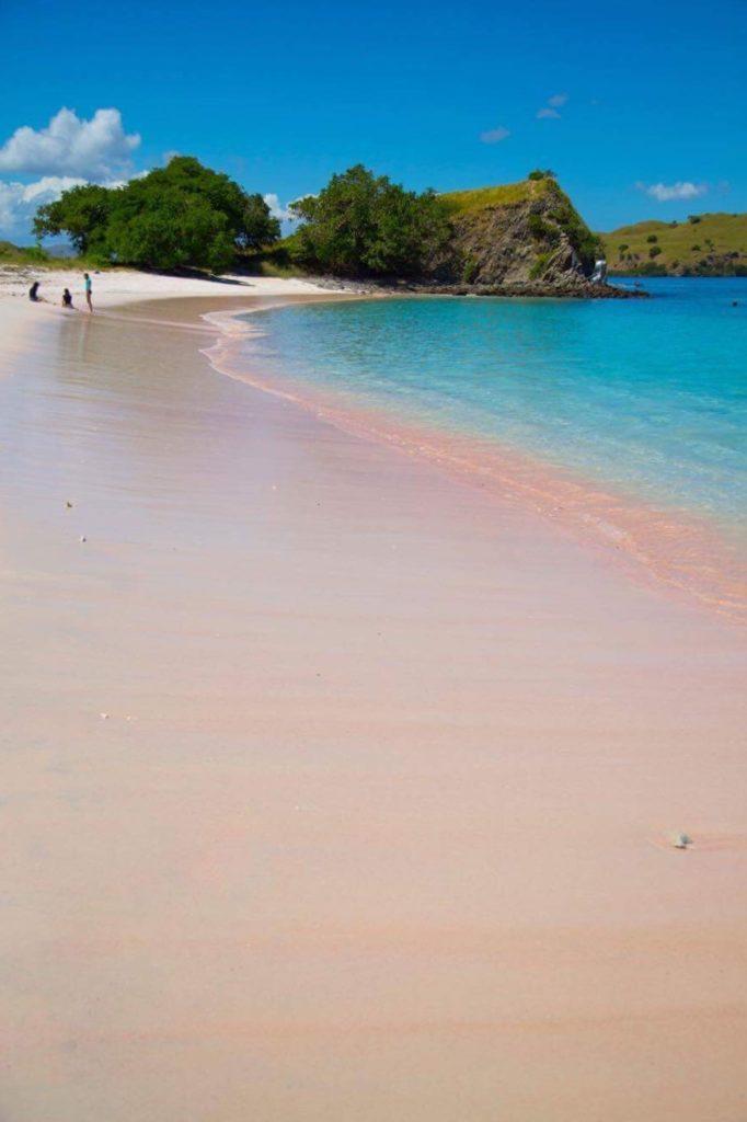 effekter av ohållbar turism pink beach Komodo nationalpark