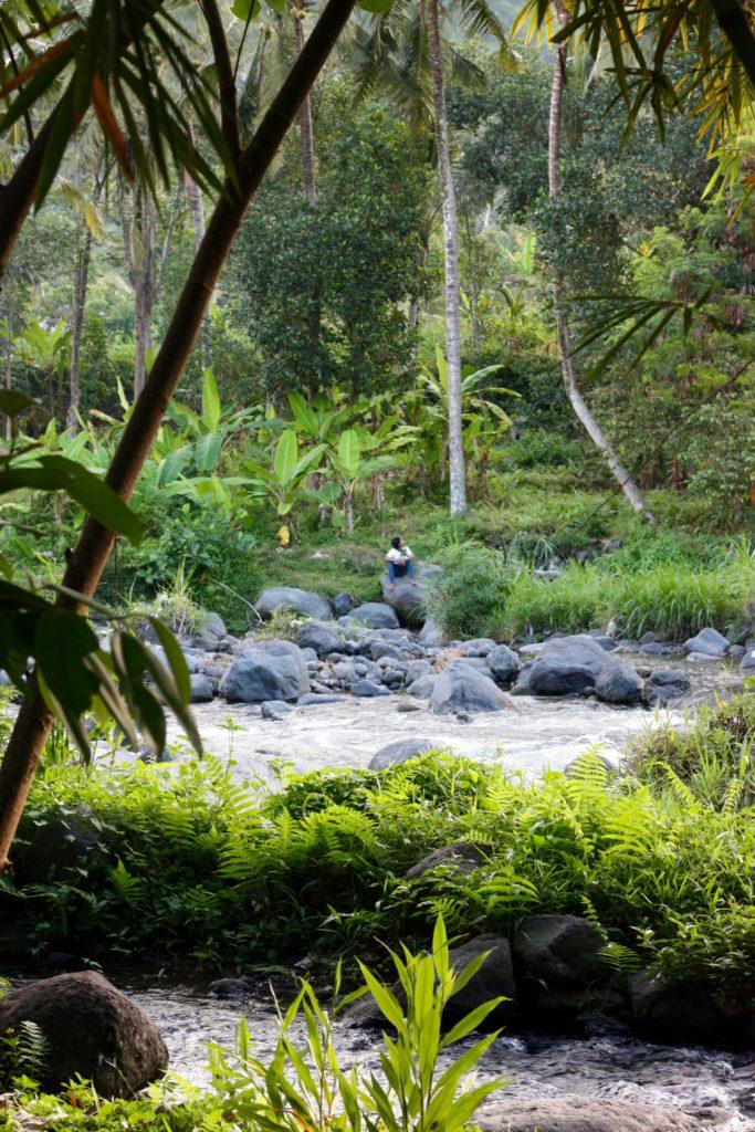 Vattendrag Darmada ekohotell Bali