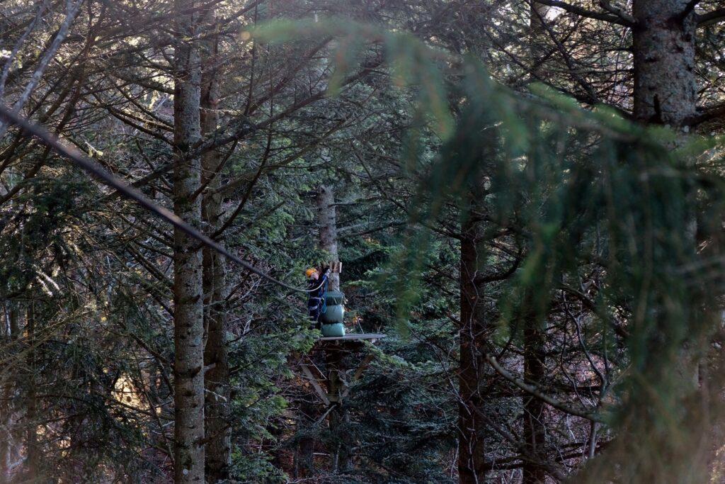 Zipline bland Ombergs trädtoppar med hela familjen
