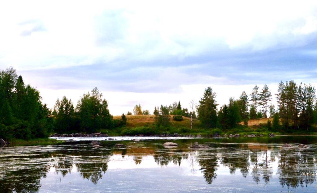 Svensk natur vattenreflektioner