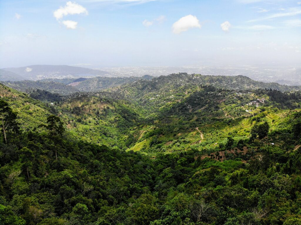 Blue Mountain Jamaica en etisk destination