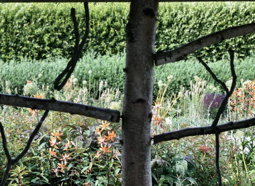 Rosendals trädgårdar
